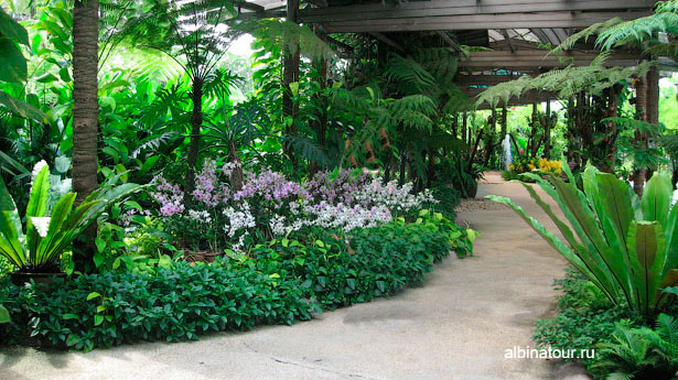 kuala-lumpur сад орхидей