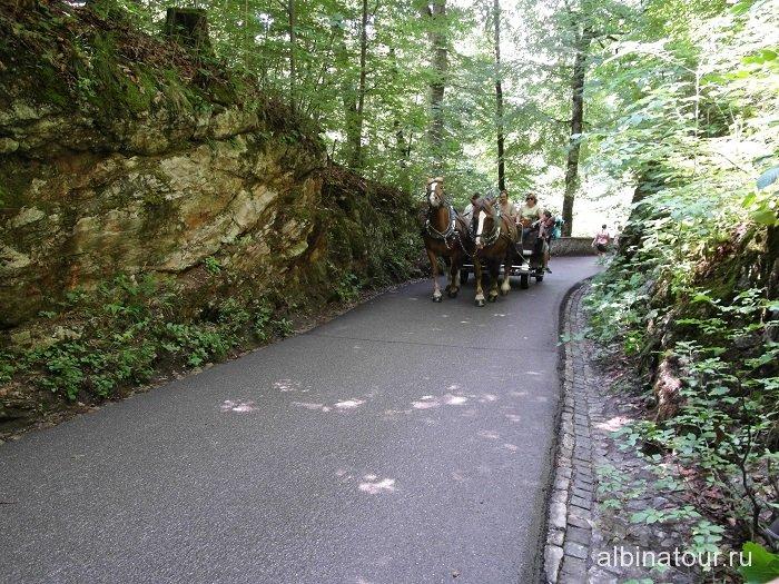 Германия повозка на дорожке к замку