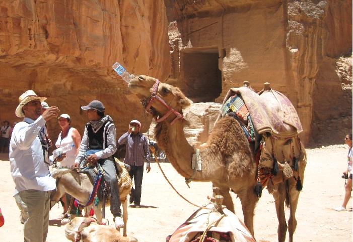Иордания Петра гид поит верблюда