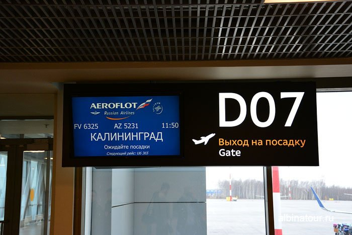 Россия аэропорт Пулково вылет в Калининград 8
