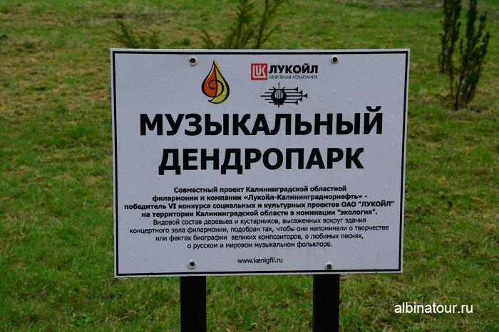 Россия  Калининград  зал филармонии или кирха 5