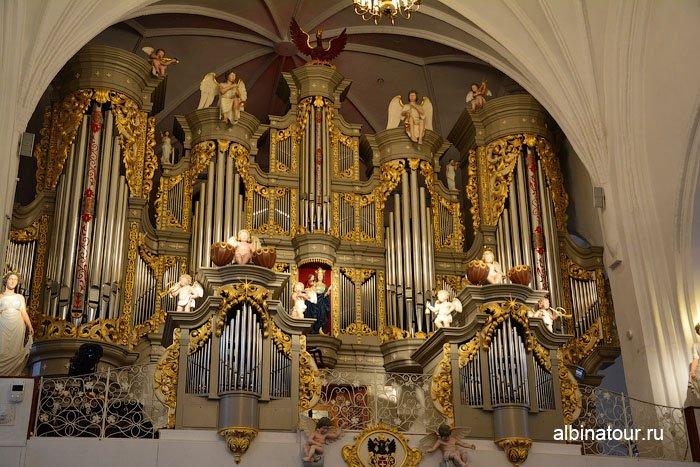 Россия концертный зал Кафедрального собора 3