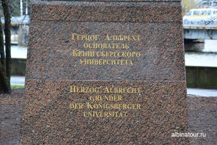 Россия Калининград памятник герцогу Альбрехту 2