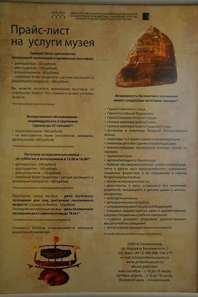 Россия Калининград музей янтаря 7
