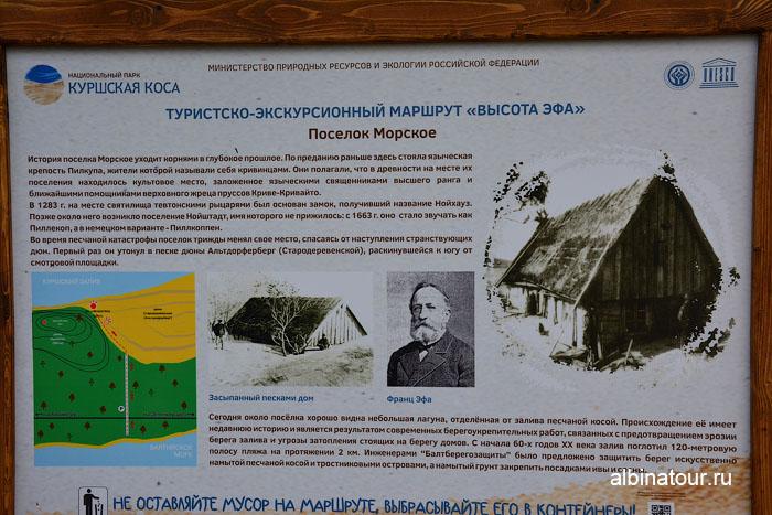 Россия Калининград Куршская коса высота Эфа информационный стенд