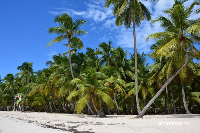 Доминикана пляж на Саоне 2
