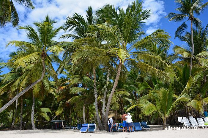 Доминикана остров Saona пляж 2