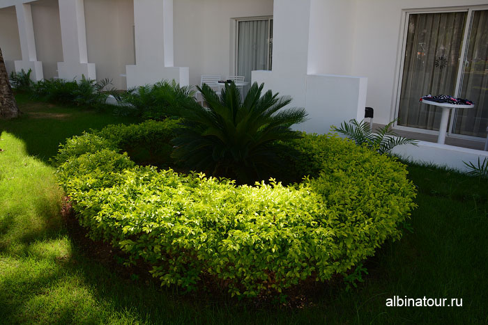 Доминикана отель be live Canoa балконы на корпусах 15 и 18