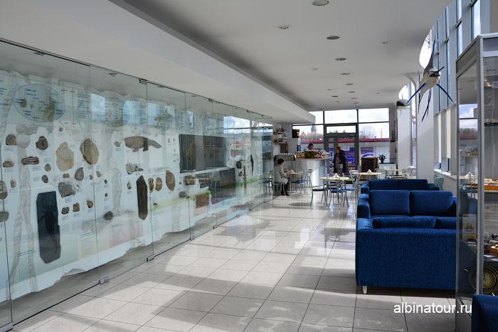Калининград музей мирового океана главный корпус 1 этаж