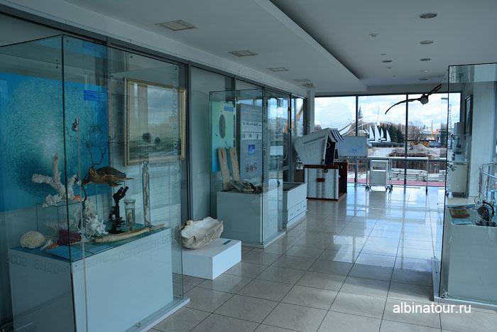 Калининград музей мирового океана главный корпус 2 этаж