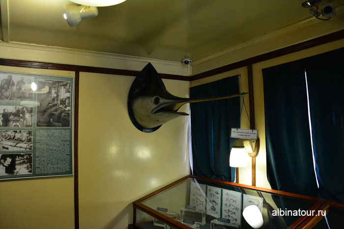Калининград музей мирового океана судно Витязь комната с буями 2