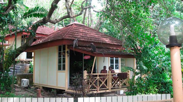 Лангкави отель Mutiara Burau Bay бунгало обезьяны