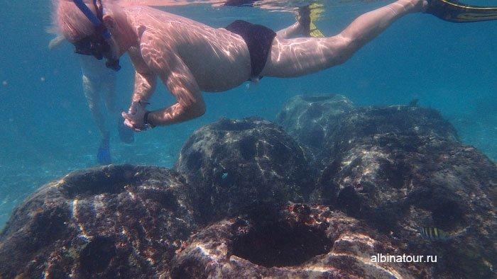 Вид на риф и ныряльщика