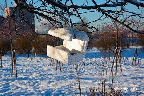 Кормушка для птиц в яблоневом саду Купчино