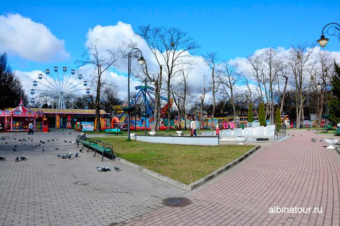 Посмотреть ЦПКО Калининград фото