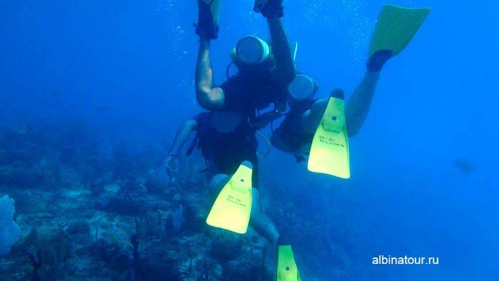 Фото Инструктор постоянно контролировал нас под водой