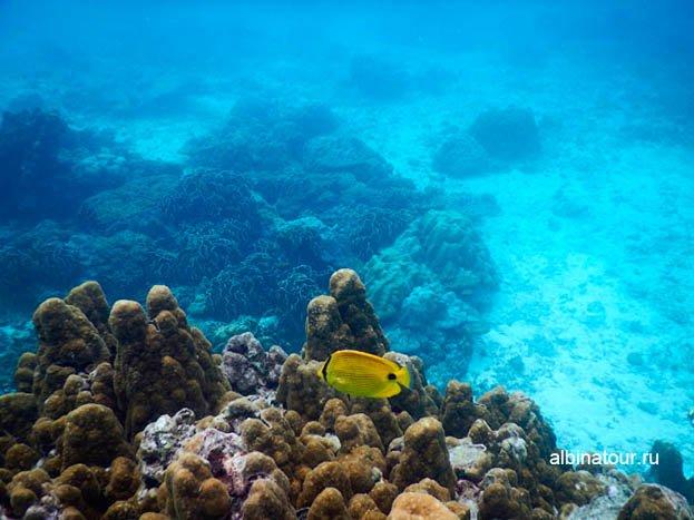 Тишина и спокойствие Андаманкого моря фото