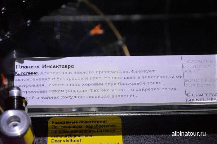 Выставка Обитатели Вселенной СПб Каталина описание