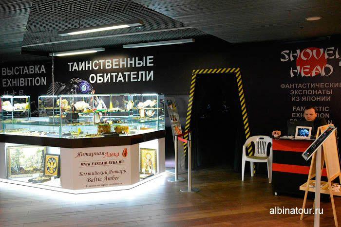 Фото касса и вход на выставку таинственные обитатели Вселенной СПб