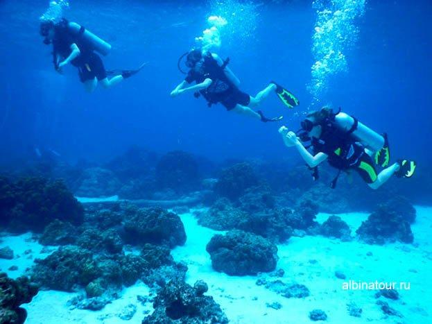 Фото Обучение дайвингу на острове Рача Яй