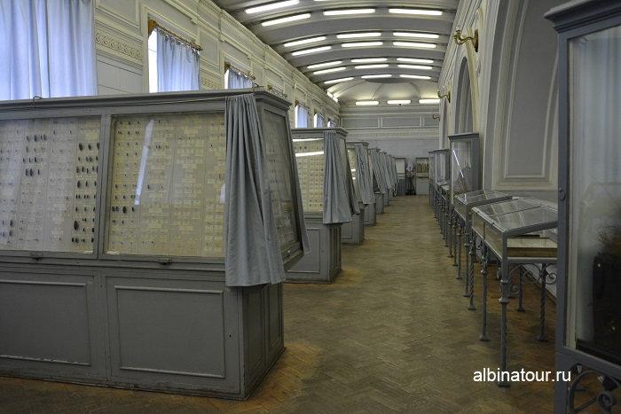 Фото ряды со стендами с различными жучками и паучками в музее СПб