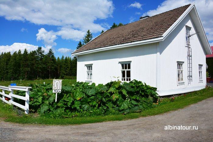 Фото фермерского дома и поля с клубникой в Финляндии
