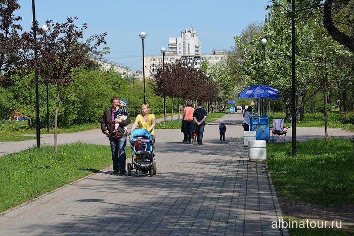 Петербург яблоневый сад центральная аллея