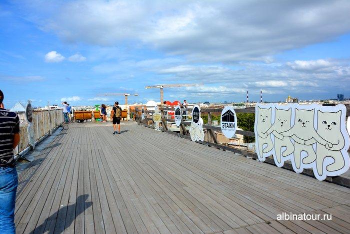 СПб лофт проект основная смотровая площадка на Лиговский проспект фото