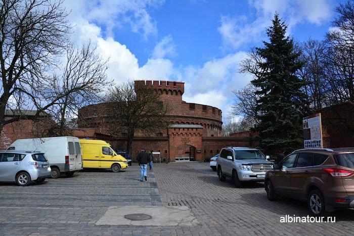 Россия Калининград башня Дона