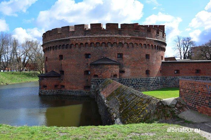 Россия Калининград башня Дона 3