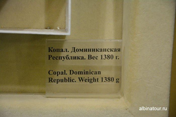 Россия Калининград музей янтаря 16