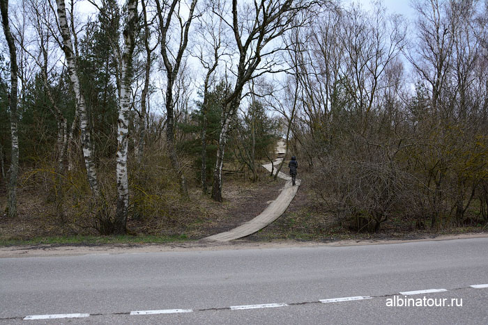 Калининград Куршская коса два берега