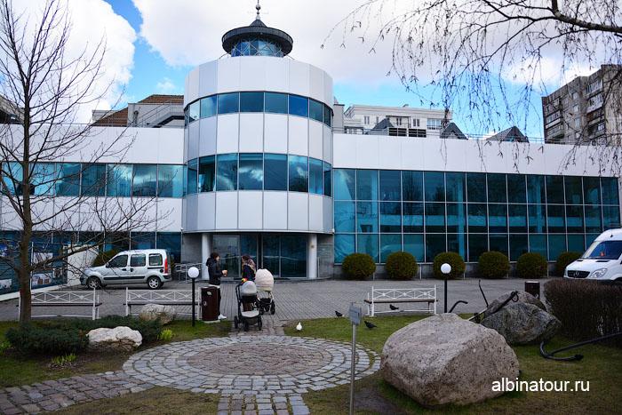 Калининград музей мирового океана главный корпус