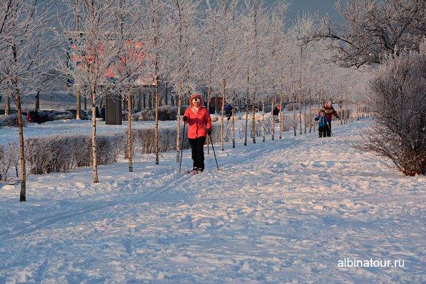 Лыжники в яблоневом саду Купчино