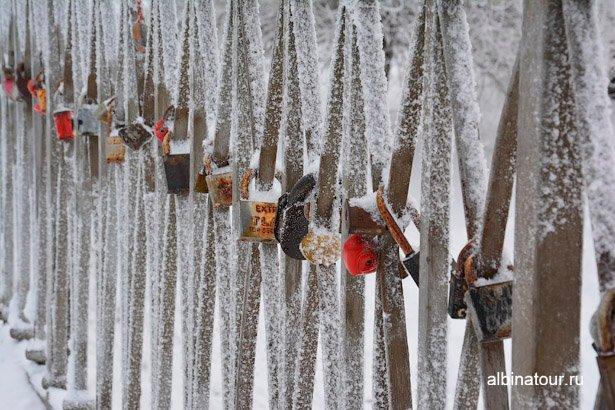 Зимний мост яблоневый сад Купчино