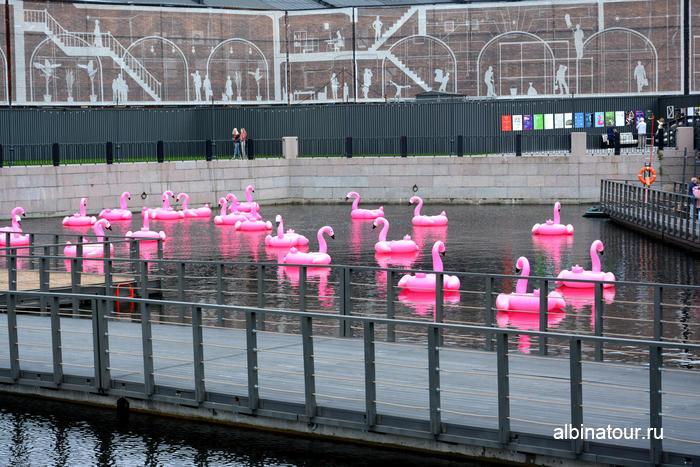 Новая Голландия Понтон и розовые фламинго