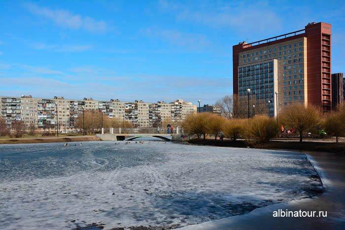 Фото Озеро в Яблоневом саду утром Масленицы