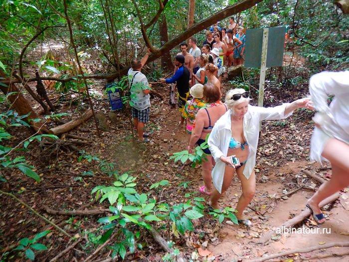 Фото пордъёма в гору в джунглях
