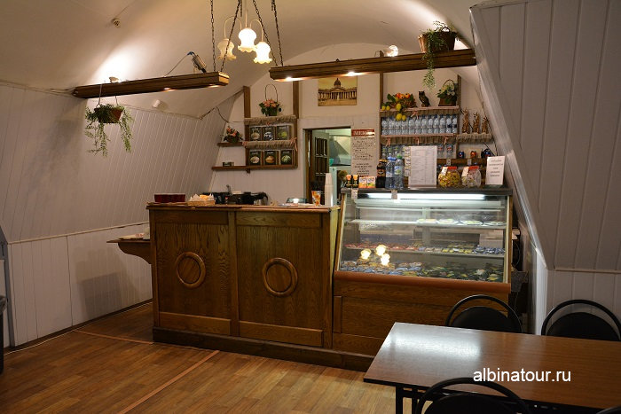 Фото кафе в нутри в Зоологическом музеи