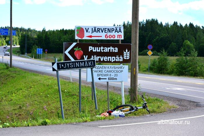 Фото указатель сбора клубники в Финляндии