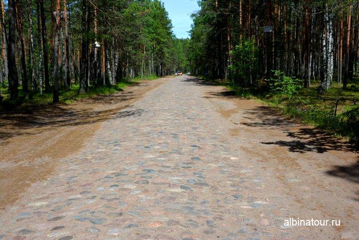 Булыжная мостовая дорога до форта Красная горка фото